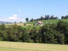 Horgenberg farm